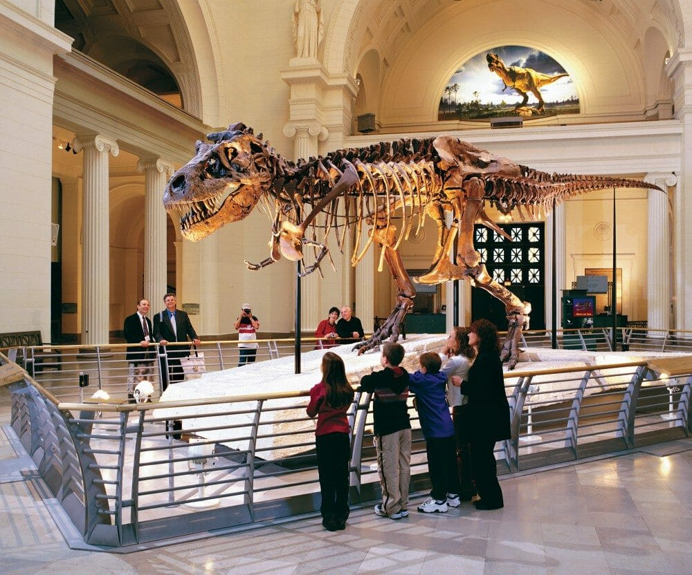 3 Day Chicago Educational Tour