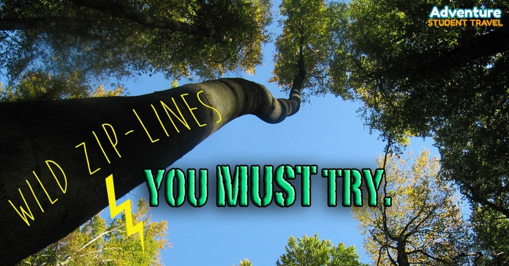 Ziplines you must try