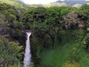 hawaii-410128_640