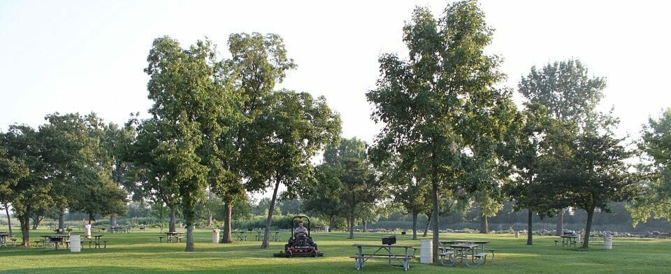 Lake_erie_metropark_picnic_area