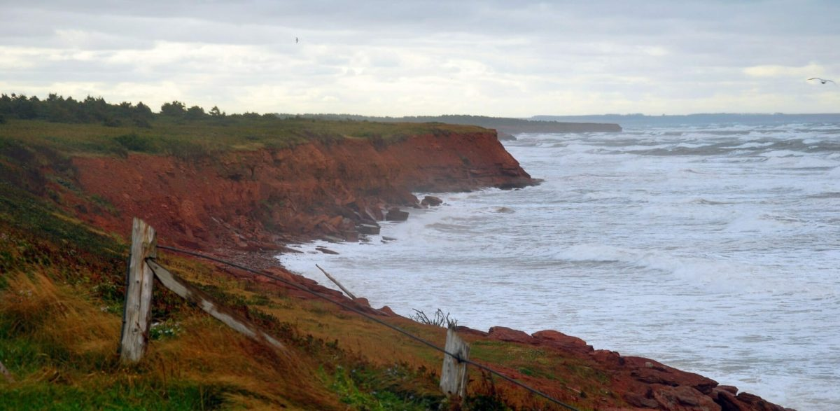 Prince_edward_island_cavendish_red_cliffs