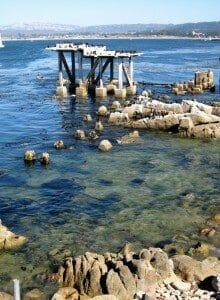 Cormorant_Condo_in_Monterey,_CA