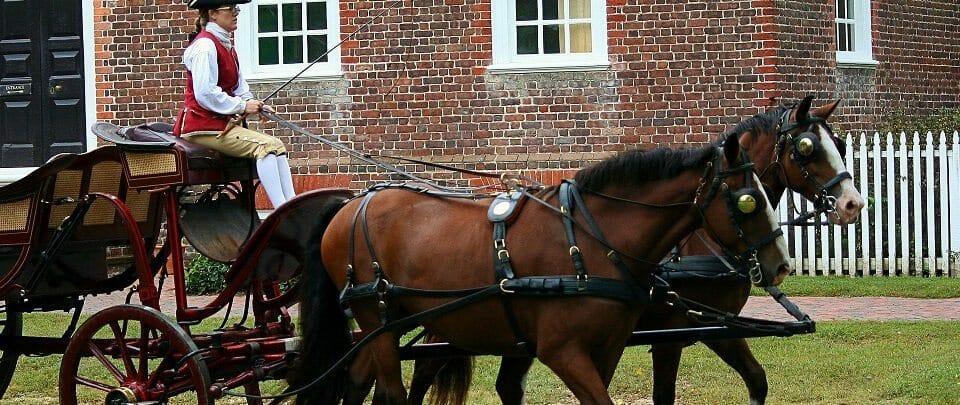 horses-65610_1920