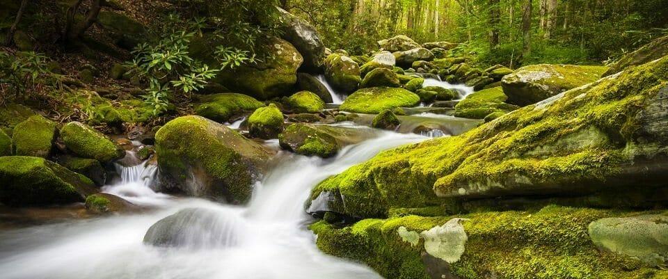 Great Smoky Mountains National Park Gatlinburg TN Roaring Fork Waterfalls