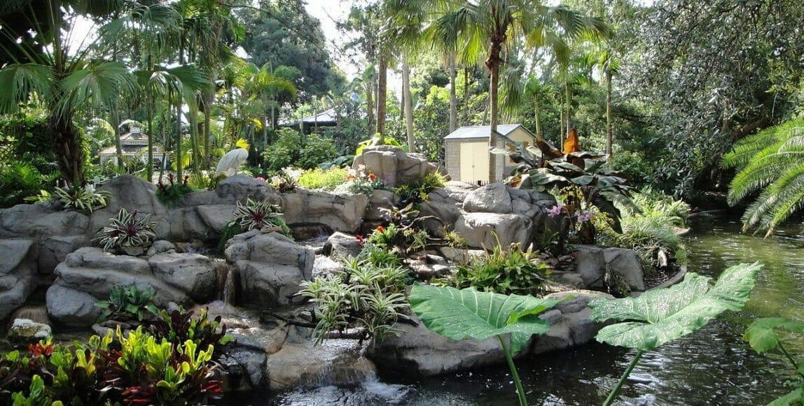 1280px-Bird_Gardens_(Busch_Gardens_Africa)