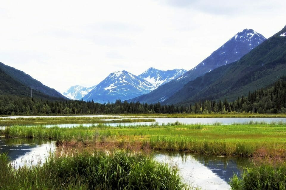 Anchorage Educational Tours