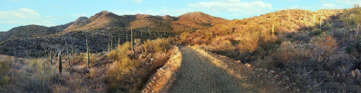 saguaro_national_park_panorama