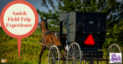 Amish Field Trip Experience