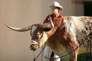 Texas Longhorns Senior Trip