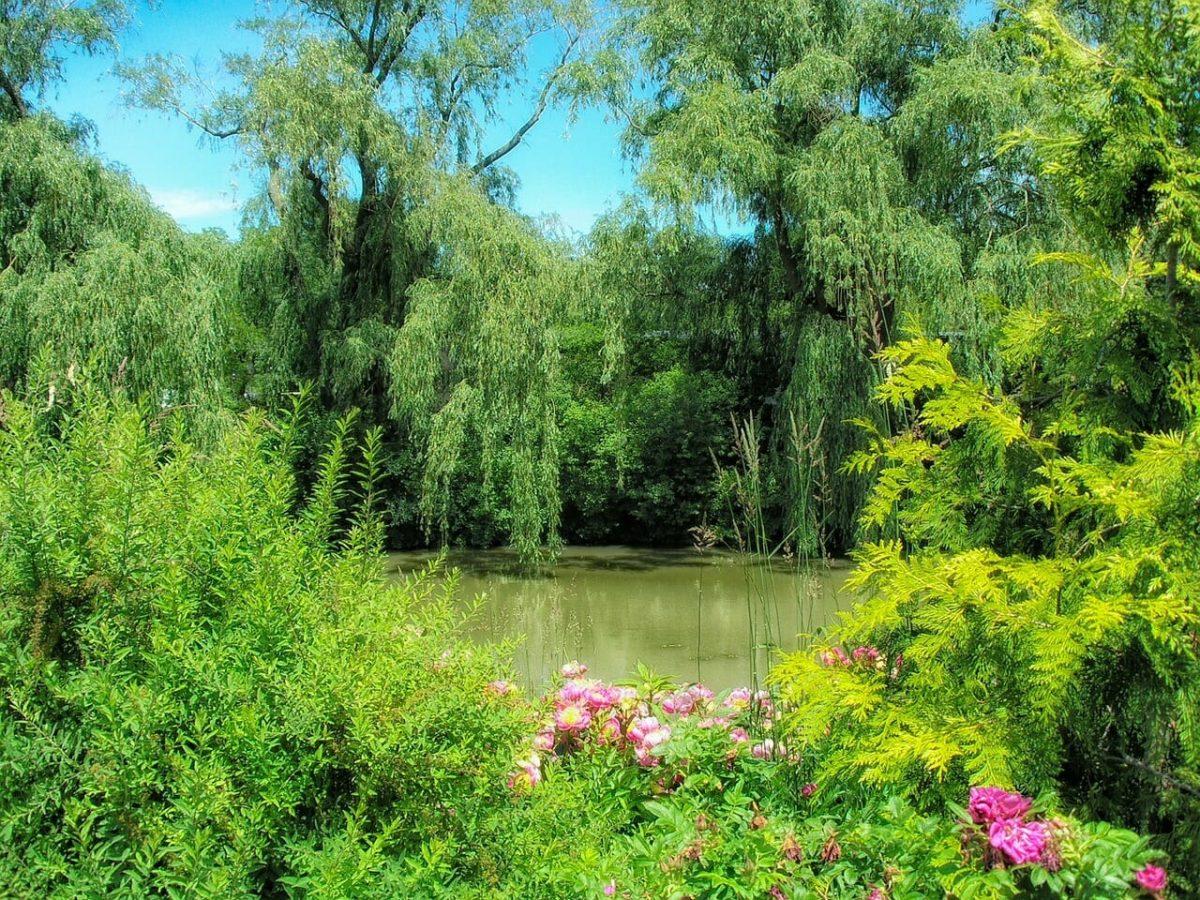 Chicago Botanic Garden AST