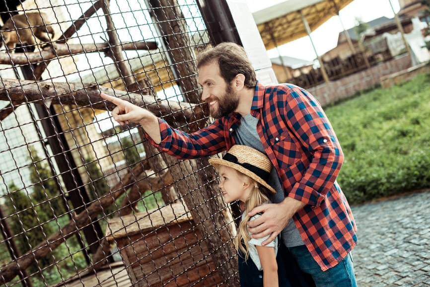 side view of man pointing away while standing near animal cage in zoo