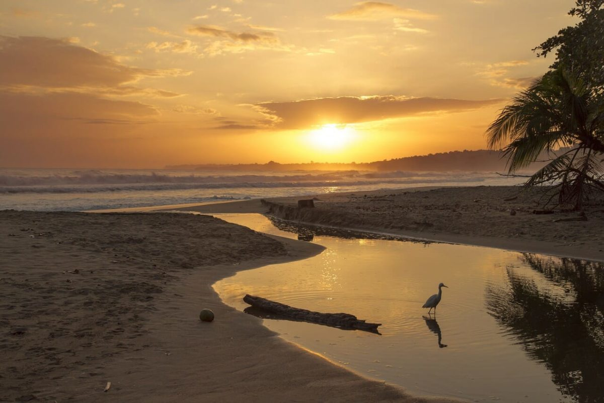 5-Day Costa Rican Getaway