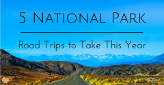 5 National Park Road Trips to Take This Year