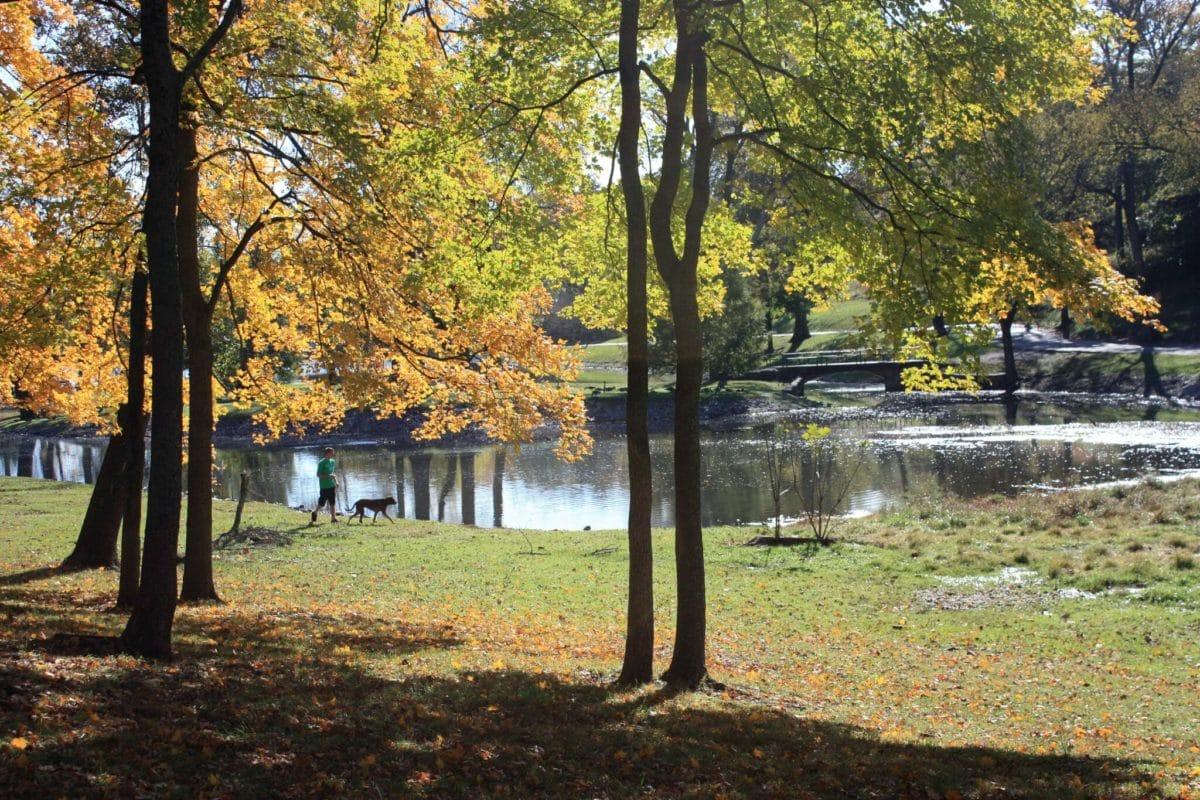 Shelby Park - Nashville