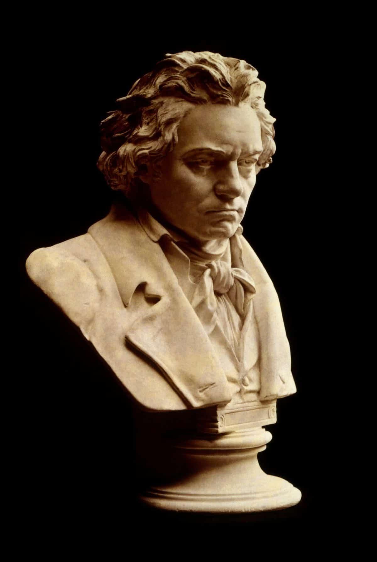 Ludwig van Beethoven Pixabay Public Domain