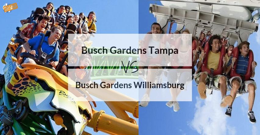 Busch Gardens Tampa Vs Busch Gardens Williamsburg